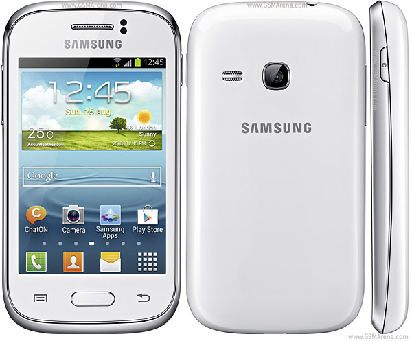 Samsung Galaxy Young S6310 pictures
